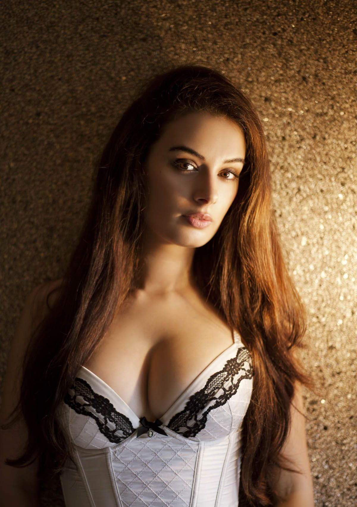Evelyn sharma hot images